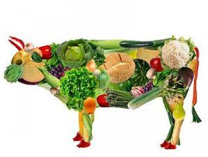 О пользе и вреде  вегетарианской диеты